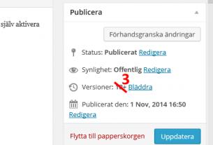 Anpassa versionsantal i WordPress