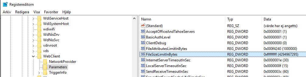 registry-webdav-parameter